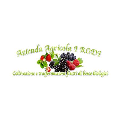I RODI - Coltivazione e Trasformazione Frutti di Bosco Biologici