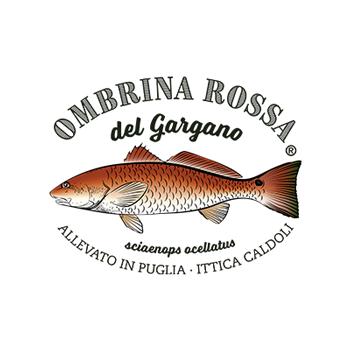 OMBRINA ROSSA DEL GARGANO - ITTICA CALDOLI SOC. AGR. A R.L.
